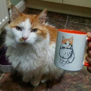 Hand Drawn Personalised Cat Mug Rescue Cat Gift
